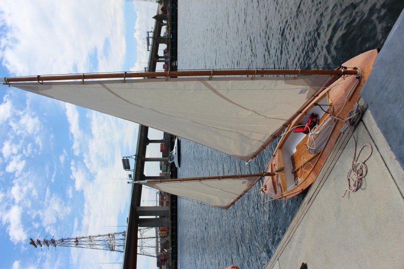 Photo 3 of strip built sailing canoe