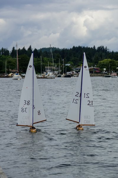 Sailing wing-and-wing