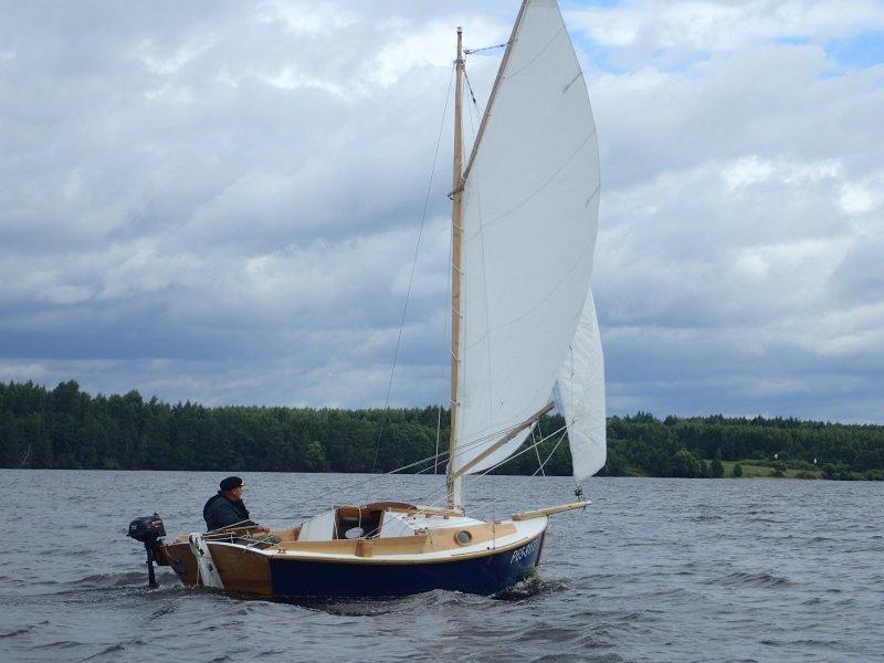 Eider sailing.