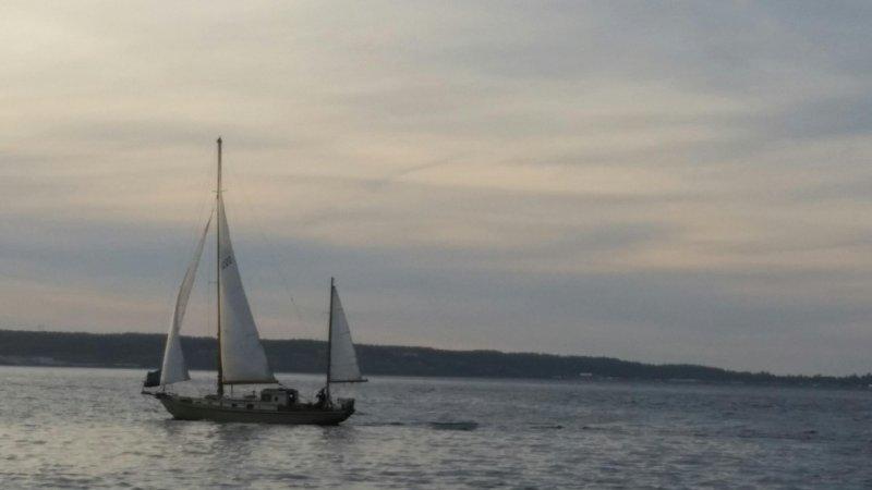 TAKU under sail
