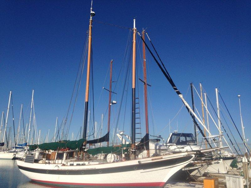 SEA RAVEN, a schooner version of William Garden's Porpoise design.