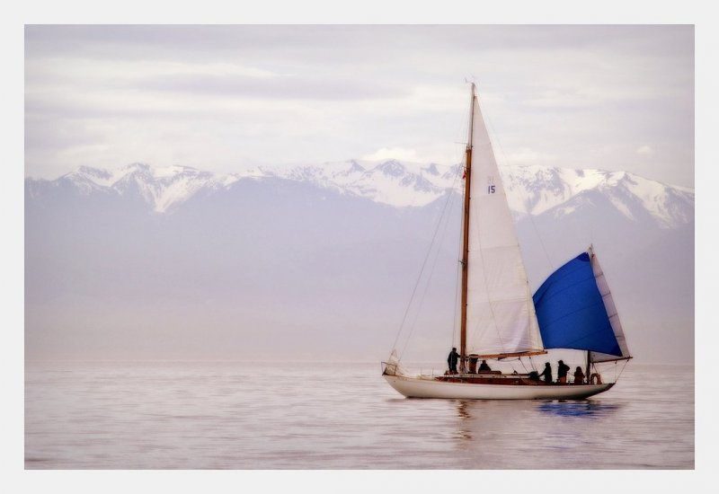 LOTUS, waiting for the start, 2008 Swiftsure Classic. Photo: Bruce Baycroft.