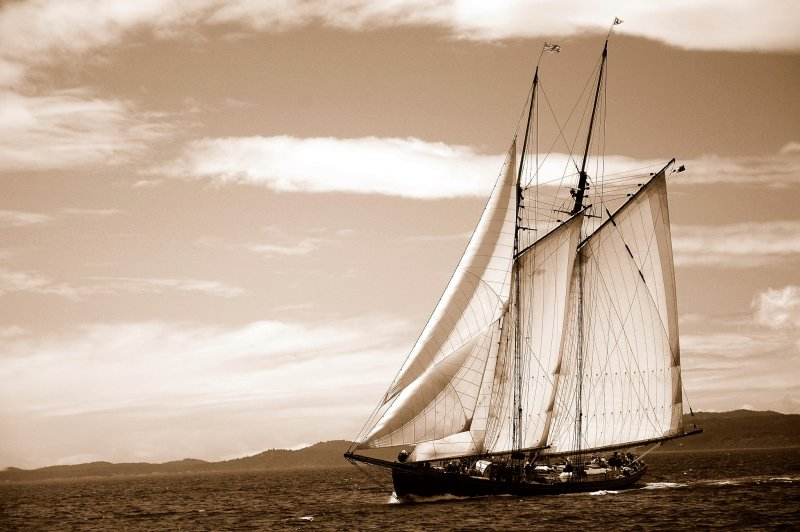 PACIFIC GRACE, photo by Jose Larochelle.