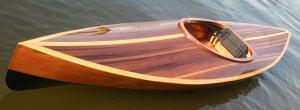 Wood Duck 10 Hybrid