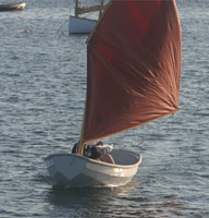 "7' 7""  Nutshell Sailing Kit photo"