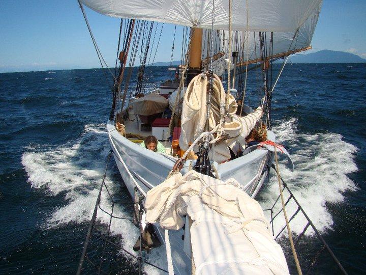 ALCYONE, Frank Prothero schooner