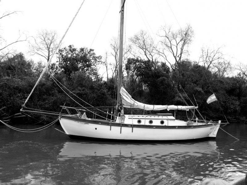 TESEO in Delta of Parana River