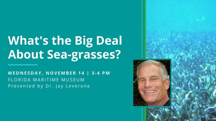 Lecture: What's the Big Deal About Seagrasses?