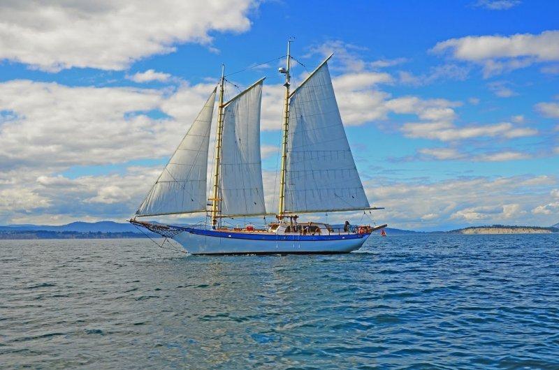 BLUE STARR, 46' Bill Garden Walloon schooner.