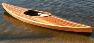 Wood Duck 12 Hybrid