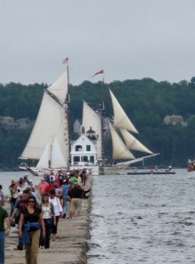 Maine Windjammer Parade of Sail