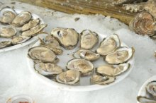 OysterFest photo by Bill Kepner
