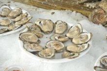 OysterFest photo by Bill Kepner
