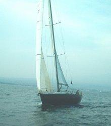 MAYDA 39
