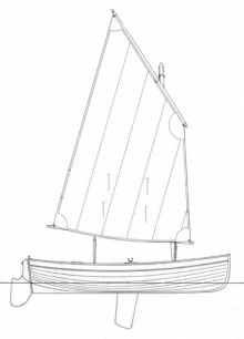 Guillemot profile